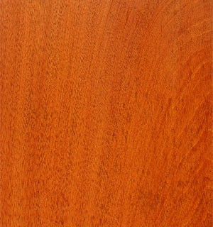 Mahogany, South American