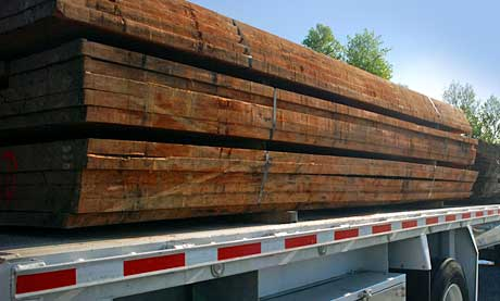 Bubinga log